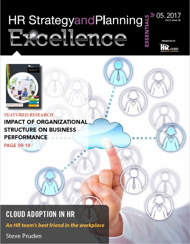 Hr Strategy And Planning Excellence Essentials  The Human